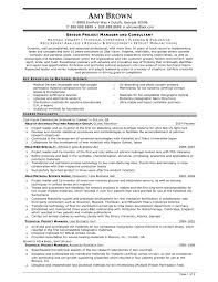 manager resume sample project manager resume  seangarrette c ager