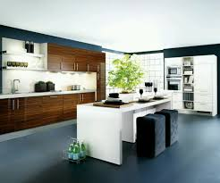 kitchen awesome kitchen cabinet designs with contemporary ideas modern contemporary kitchen cabinet designs for fantastic home kitchen cabinet ideas awesome kitchen cabinet