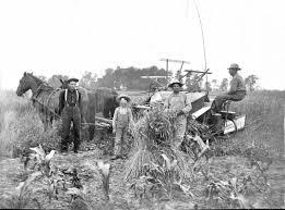 Image result for farm reaper