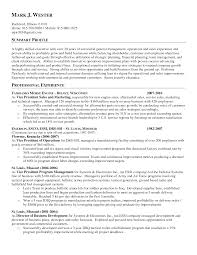 Examples Of Resumes   Resume Template Write Objective Summary     CV Plaza