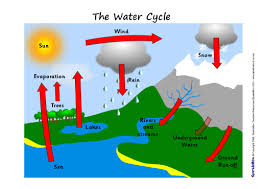 brs rm     meleanesimple water cycle pictures