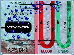 Bilderesultat for detox fotbad