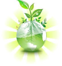essay on environmental education writefiction web fc com environmental education essays mega essays