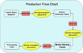 production flow charttoday the standards and measures in poultry industry have advanced more than ever  mostly to do   the prevention of serious disease outbreaks