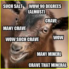 I Crave That Mineral | Know Your Meme via Relatably.com