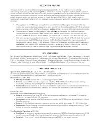 it s executive resume