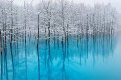 Hokkaido is a wonderland filled with <b>beautiful Sakura</b>, the purest ...