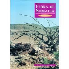 Flora of Somalia: Vol. 2 - Angiospermae (Tiliaceae-Apiaceae) | Kew ...