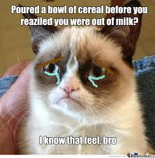 Weepy Cat by pauljohnson - Meme Center via Relatably.com