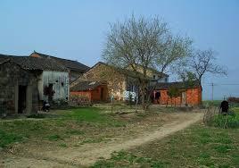 農村的圖片搜尋結果