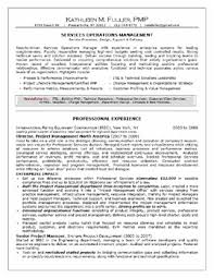 resume professional accomplishments template resume professional accomplishments examples achievements for resume examples