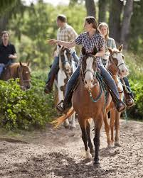 Image result for trail riding images