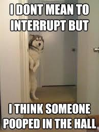 Polite Dog memes | quickmeme via Relatably.com