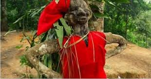 Image result for nigerian man at the shrine