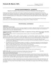 environmental consultant resume objective resume skills for server environmental consultant resume objective oil field consultant resume example consultant resume sustainability cover letter sample environmental