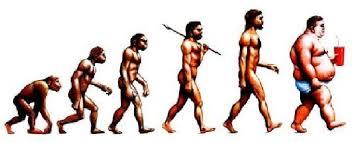 Resultado de imagem para evolução do homem ao longo do tempo