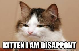 Kitten I am disappont - Highly Unimpressed Cat - quickmeme via Relatably.com