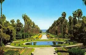 صور لحديقة الحامة بالجزائر العاصمة