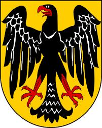 Image result for german eagle