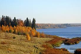 Там, где Левитан написал «Золотую осень — рассказ от 03.12.18