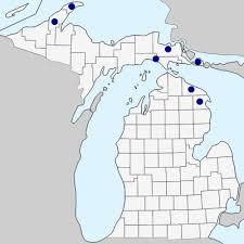 Linum catharticum - Michigan Flora