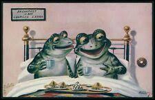 Коллекционные открытки лягушка - огромный выбор по лучшим ...