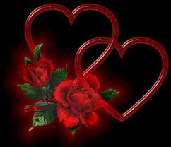 وردة قلبي.. images?q=tbn:ANd9GcS