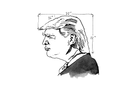 young trump voters share the surprisingly personal reasons that the new yorker animated gif