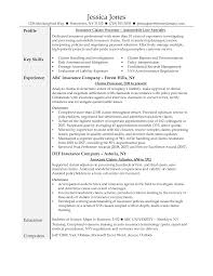 claims adjuster resume examples resume examples  claims adjuster resume examples