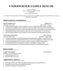 Write Your Own Resumes | Workerandrone Resume See More Do More How Make A Resume And Cover Letter Best Template Collection