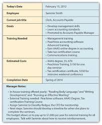 Career development essay