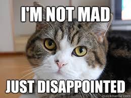 judgment cat memes | quickmeme via Relatably.com