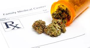 Image result for medical cannabis pictures