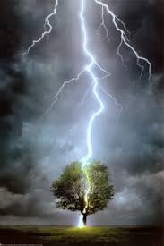Image result for lightning life