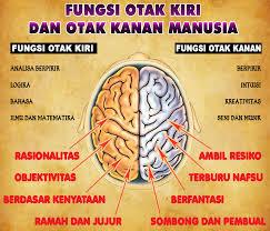 Hasil gambar untuk gambar anak yang seimbang otaknya