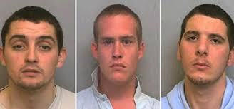 Nathan Sargent, Mark Starr and Michael Hodge have been jailed for the murder of Shaun Godfrey. Jurors agreed that he committed the act of manslaughter and ... - article-1067688-02E3A65300000578-612_468x219