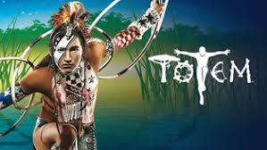 Image result for Cirque Du Soleil Totem Images