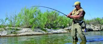 Bildergebnis für Angler am Inn