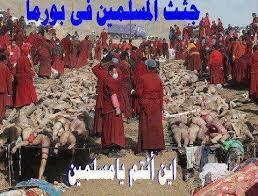 Masacres en Birmania Images?q=tbn:ANd9GcSk1nNyoyoycDuxCzVHbi3iNKA1EGOYOYUe9ae-HiFq6RdUlGU9