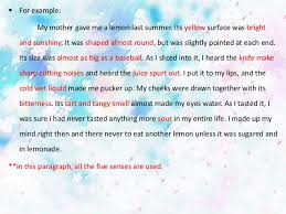 write essay my motherin english