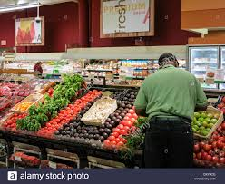 publix grocery store employee stock photos publix grocery store employee stocking fresh produce section publix super market in tampa florida stock image