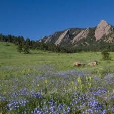 Moving Services in Boulder, CO