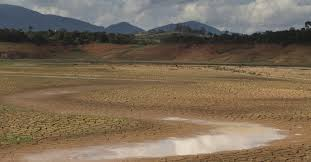 Resultado de imagem para fotos das margens do sistema cantareira