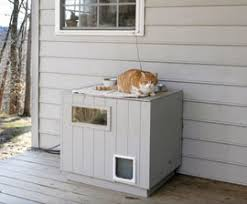 How to Care for Outdoor Cats in Winter   The Humane Society of the    How to Care for Outdoor Cats in Winter  Shelter