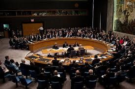 Image result for نیجریه رئیس دورهای شورای امنیت سازمان ملل شد