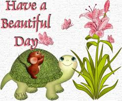 Image result for beautiful days