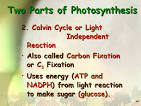 2 main parts of photosynthesis <?=substr(md5('https://encrypted-tbn2.gstatic.com/images?q=tbn:ANd9GcSkrvVdlkA7DpBKUhJIsBQOfwRGGZA4h3apeQfD3mmmDANKs6hgO9nNDTCp'), 0, 7); ?>