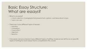 basic essay structure enl spring basic essay structure basic essay structure what are essays 9702 what is an essay
