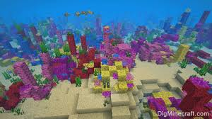 Minecraft <b>Coral Reef</b> Seeds for Java Edition (PC/<b>Mac</b>)