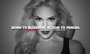 Finest 21 lovable quotes by gwen stefani image German via Relatably.com